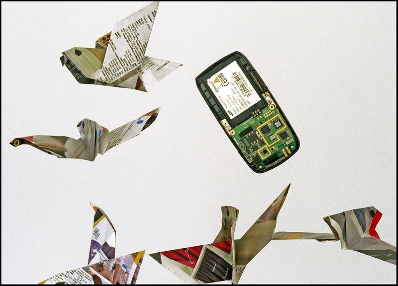 PigeonVoleMail