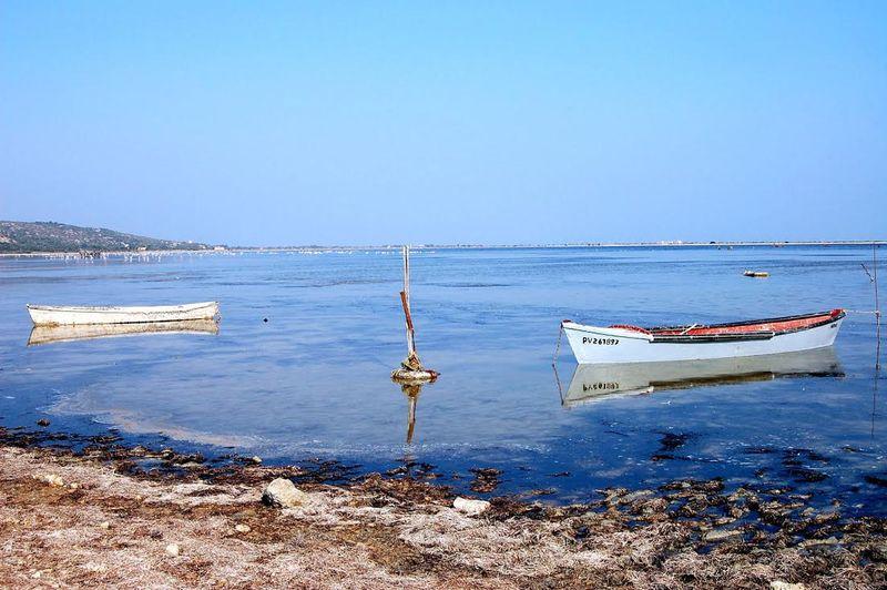 Au bord de l'étang - Paulette Pauc