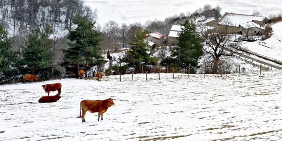 Riva-Bella---Montagne.jpg