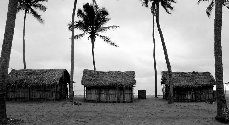 Tropiques (tristes) - TH